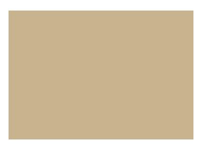 DP-logo-399